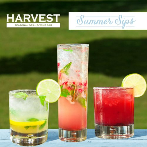 Harvest Seasonal Cocktails and Specials